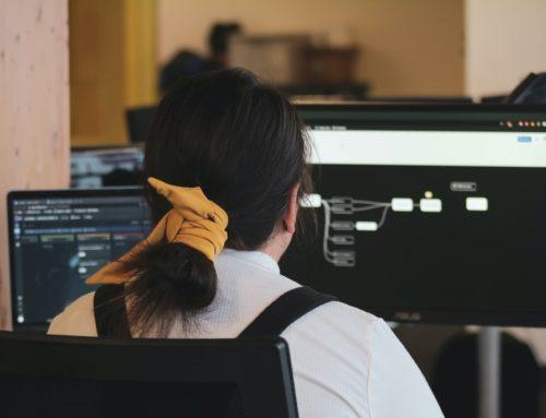 Wat is een projectprocesoverzicht?